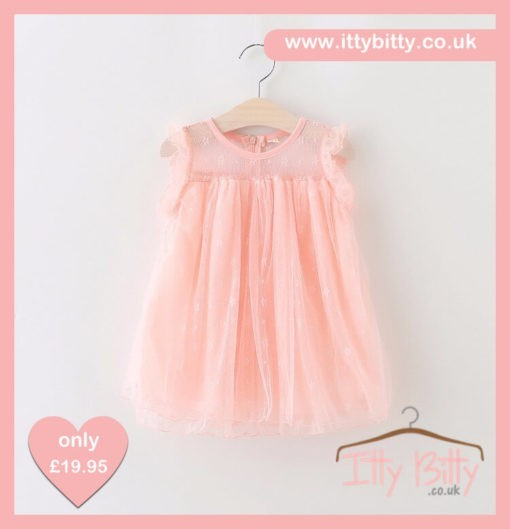 Itty Bitty Summer Fields Party Dress