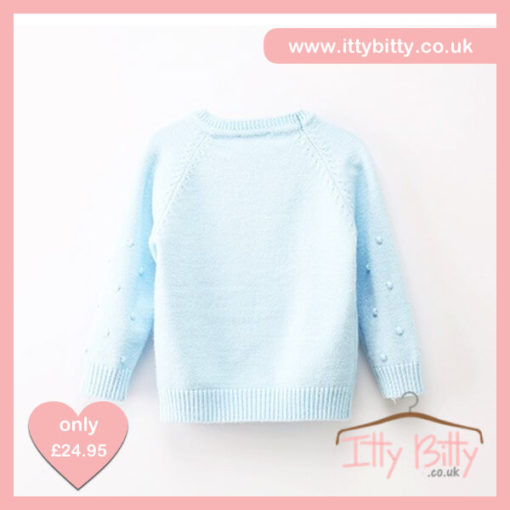 Itty Bitty Soft Blue Bow Tie Autumn Winter Jumper