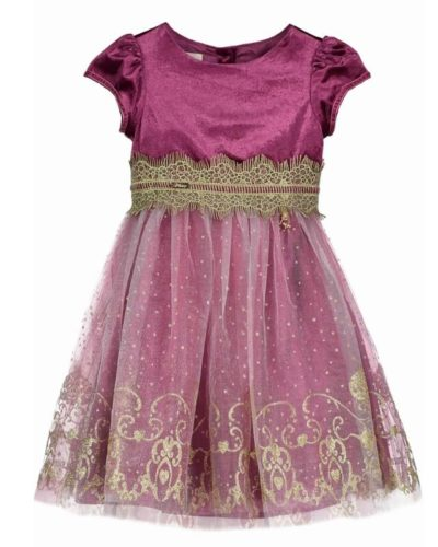 Disney Boutique Princess Jasmine Damson Velvet & Gold Themed Dress
